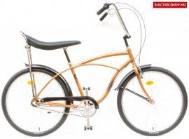 PEGAS STRADA 26 FFI N3 kerékpár agyváltós